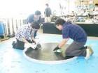 20100626 ロボット相撲オープンセミナー 13